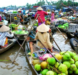 Thuê xe du lịch đi tham quan Đồng Bằng Sông Cửu Long