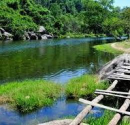 Thuê xe 45 chỗ đi thác Dambri bảo lộc