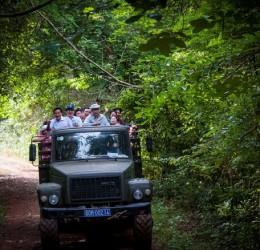 Khám phá vườn quốc gia Nam Cát Tiên bằng xe du lịch 16 chỗ