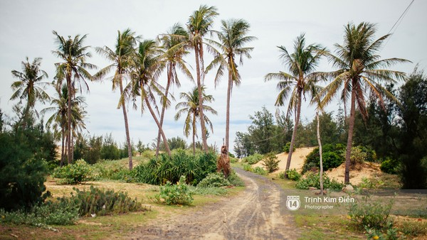 Con đường xinh đẹp đi vào Gành Ông - Thuê xe du lịch đi Gành Ông - Bãi Xép