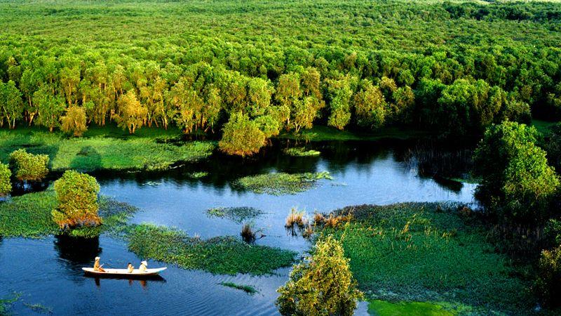 Rừng Quốc gia U Minh vẫn giữ được nét hoang sơ