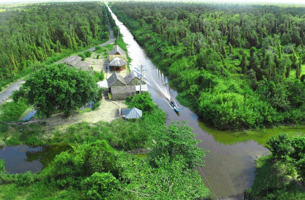 Cánh rừng U Minh huyền bí