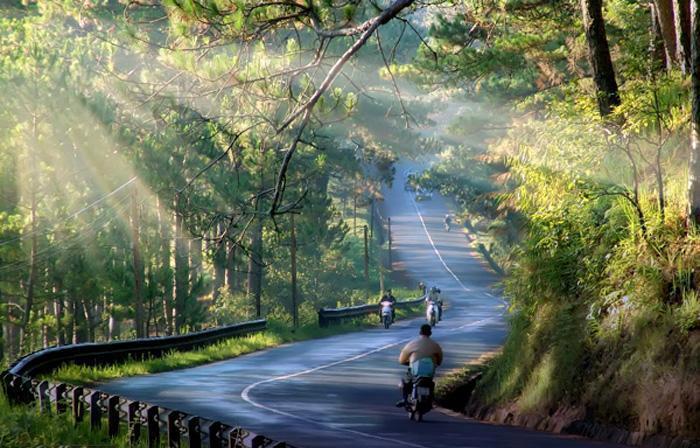 Trải nghiệm Đà Lạt mộng mơ bằng xe du lịch | XeMGM.Com